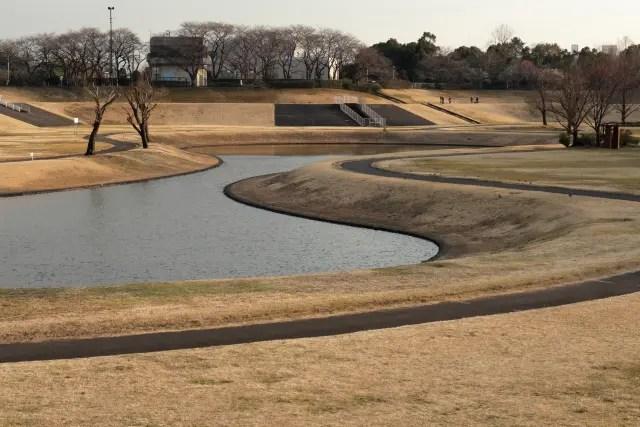 増水前の池