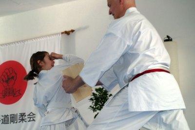 karatedemo-austellung-maerz-08