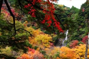 Sendan-Todoro Autumn view