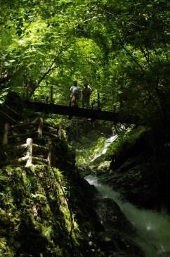 Umenoki Todoro waterfalls, Gokanosho