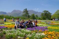 Kuju flower park with Mt Kuju