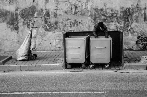 Urban gatherer