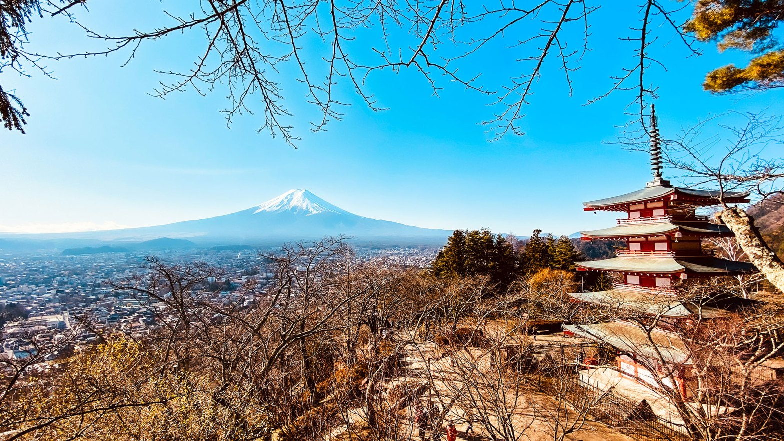 Iconic view of Mt Fuji from Chureito Pagoda