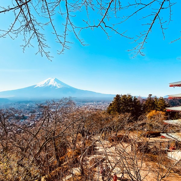 Must see beautiful view of Mount Fuji from Chureito Pagoda