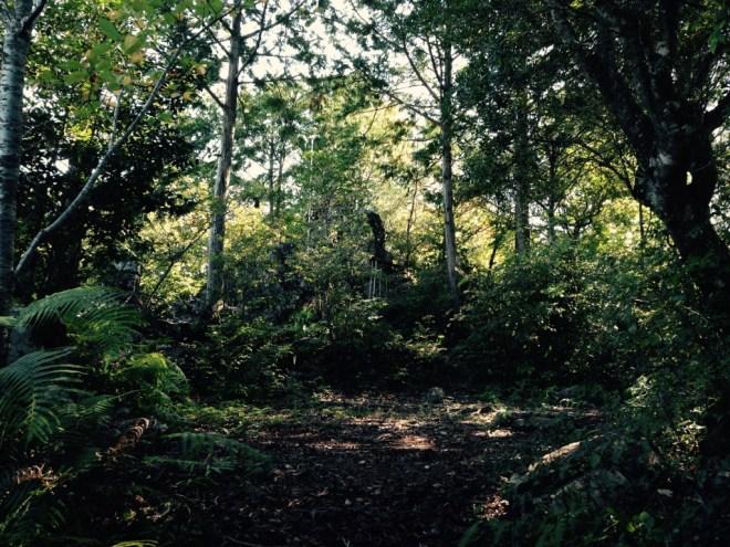 大瀧山山頂の石鎚神社