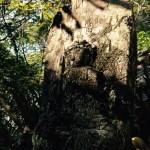 大滝山のFacebook & インスタグラム始めました!