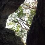 大滝山の洞くつ