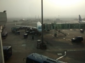 That's my flight