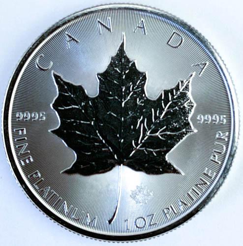 1 Oz Platinmünze Maple Leaf Münze Vorne
