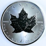 1 Oz Platinmünze Maple Leaf Münze Vorne