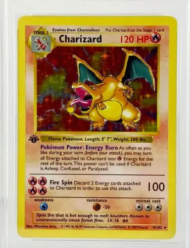 Logic Charizard Pokemon