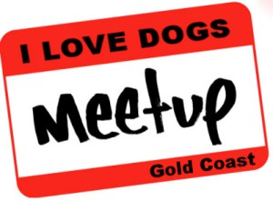 We all walk our (or other peoples') dogs, so why not do it together ! Anyone who loves dogs is welcome to join !