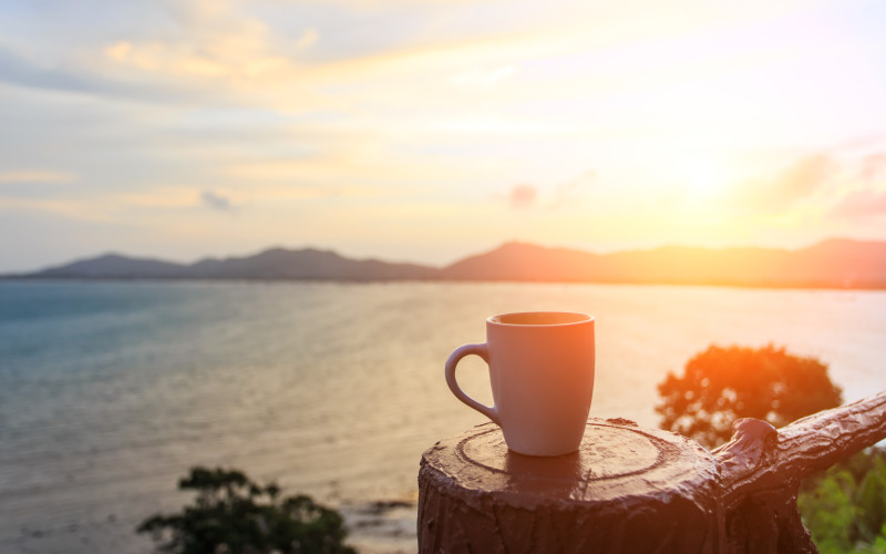 Рецепты с использованием чая. «Солнечный чай»