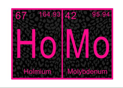 HoMo card