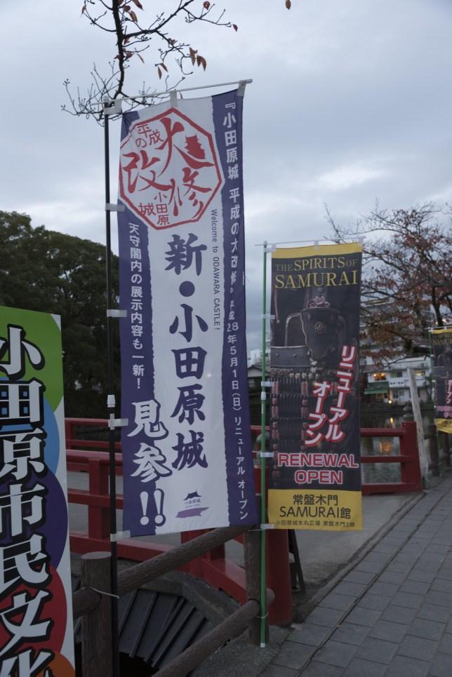 kanagawa_tanzawako_016