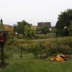G-Wurf Godehard neues Zuhause in Hildesheim 17