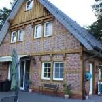 G-Wurf Marley neues Zuhause in Ankum
