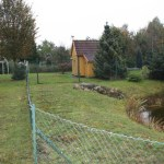 G-Wurf Nela neues Zuhause in Papenburg 08