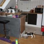 G-Wurf Paul neues Zuhause in Wanlo 12