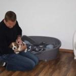 H-Wurf Happy Haydee neues Zuhause in Steinfurt 05