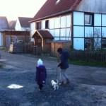 I-Wurf Iceage neues Zuhause in Unna 04