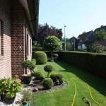 J-Wurf Jilly neues Zuhause in Bocholt 09