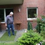 K-Wurf Knight Kliff neues Zuhause in Erkelenz 08