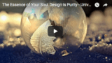 Video & Transcript ~ Universal Mother Mary: The Essence of Your Soul Design is Purity