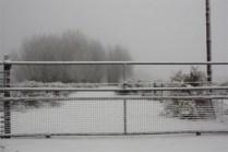 Eindelik Snow July 2012 073