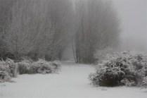 Eindelik Snow July 2012 078