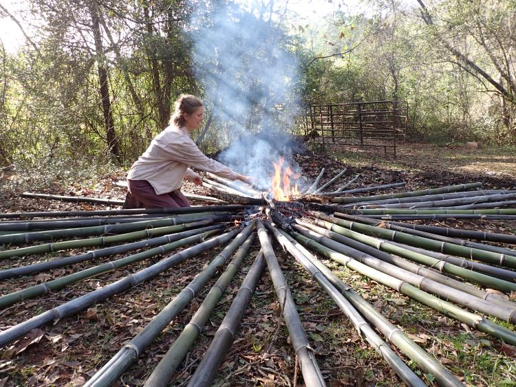 Woman charring locally harvested bamboo fence posts to make them last longer