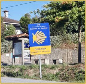 Buen Camino Santiago de Compostelle (39)