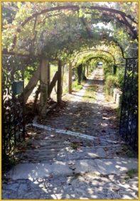 Buen Camino Santiago de Compostelle (54)