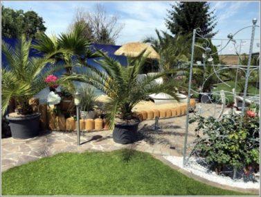 Business Garten (8)