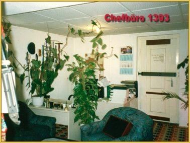 Hirschbilder aus dem Jahre 1992 (21)