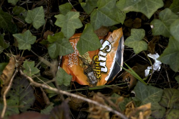 A chip bag hides in the bushes after Hardly Strictly Bluegrass Festival at Golden Gate Park Tuesday, Oct. 7, 2014 at Golden Gate Park in San Francisco. Amanda Peterson / Xpress.