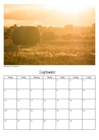 calendar-v310