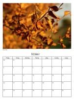 calendar-v311