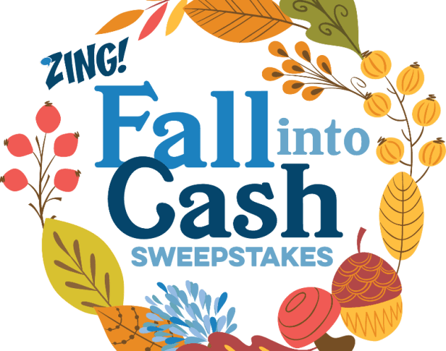 ZING – Fall into Cash Sweepstakes