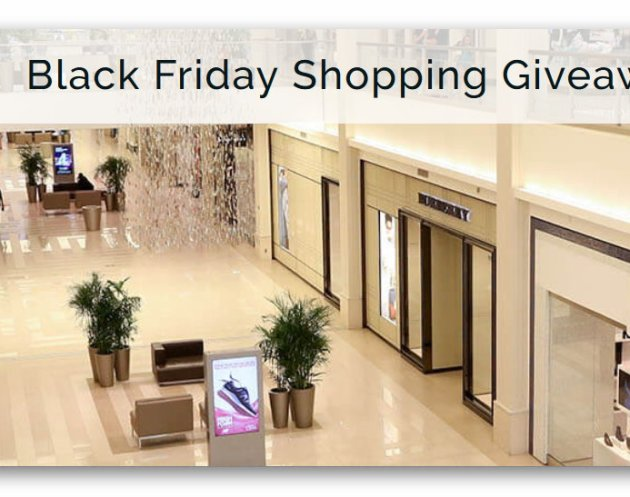 Win a Mall of America Black Friday Shopping Spree