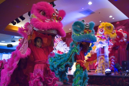 jing wo lion dance calgary 2017 earth hour st. patrick's island night photography regency palace restaurant