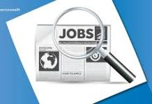 Latest Job Vacancy In Nigeria Sunday 28th November 2020