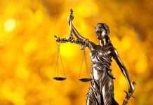 35 List of Law Courses in University