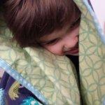 Hedgehog flannel blanket