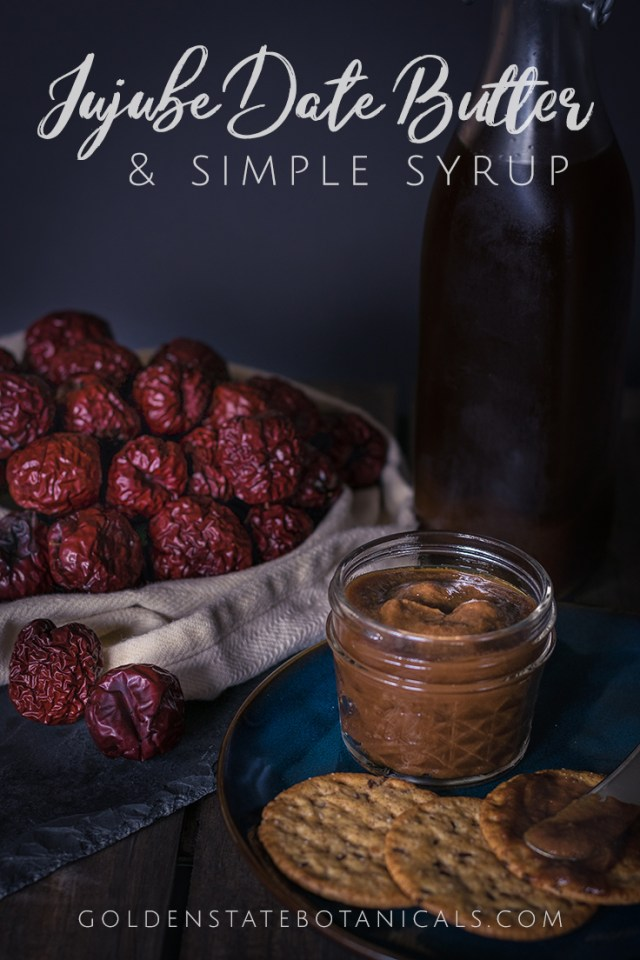 Sugar-free Spiced Jujube Date Butter | A delicious autumn treat that also supports digestion. My favorite way to take my herbs is to incorporate them into my food, and this is one my tastiest medicinal concoctions yet! | Herbalist Stephanie McCann at Golden State Botanicals