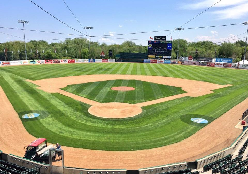 Goldeyes Annual Open House – May 6th