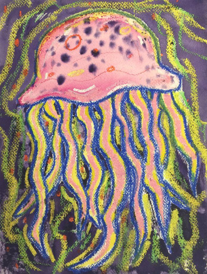 Jellyfish CC