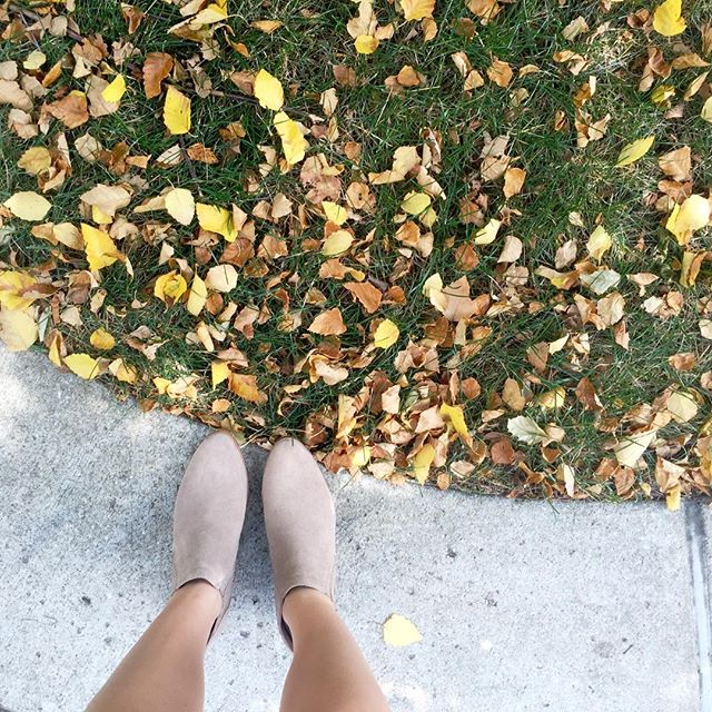 WHAT I WANT WEDNESDAY: FALL TRANSITION.