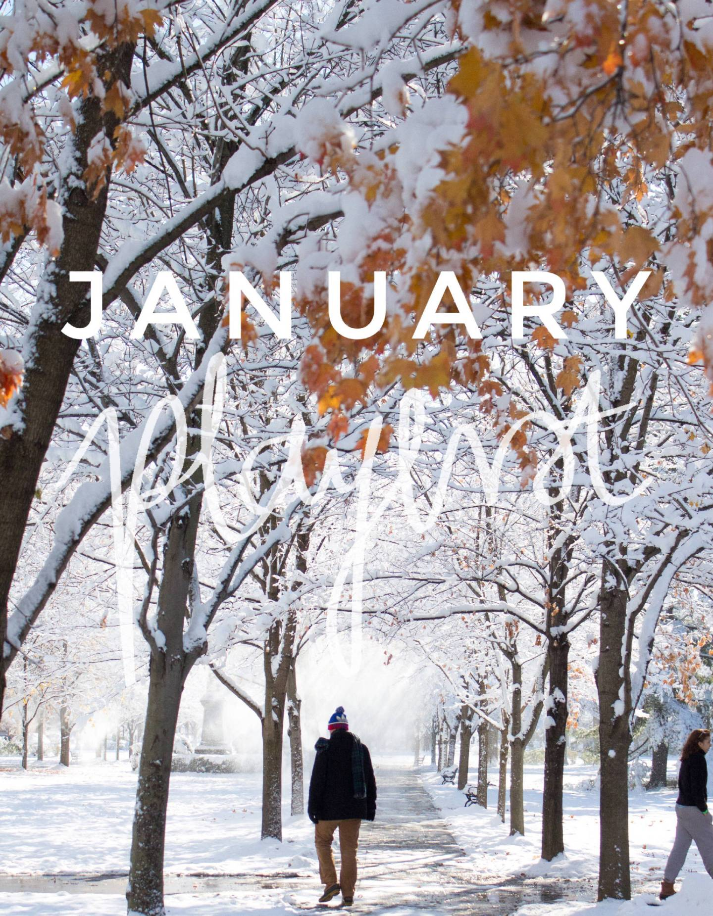 January Playlist - 10 Songs to Listen to This Month