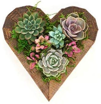 Succulent Heart Wood Planter